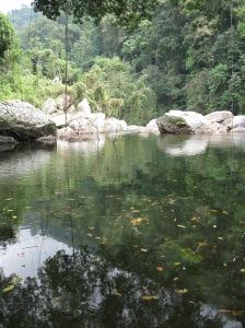 Rio Buritaca