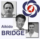 2011 Aikido Bridge