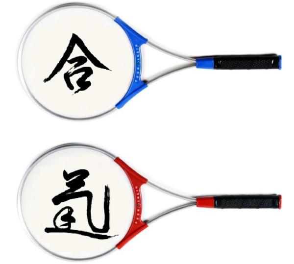 Aikido o Squash