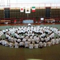 Aikido: l'Arte Marziale per il Terzo Millennio