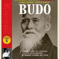Fresco di Stampa: Takemusu Aikido vol. 6 - Edizione Speciale Budo