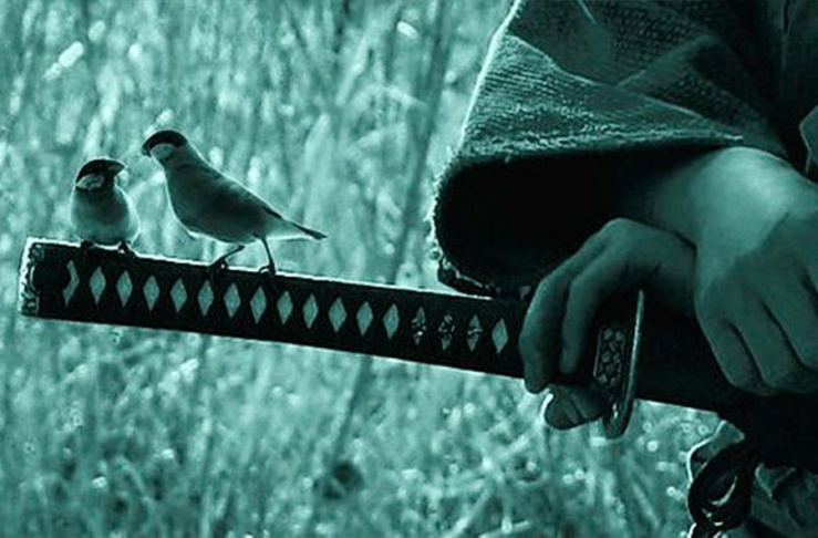 Samurai Sword Birds
