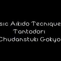 Tantodori Chudantsuki Gokyo