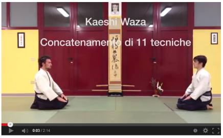 Aikido Kobayashi Ryu -Kaeshiwaza 11-techniques