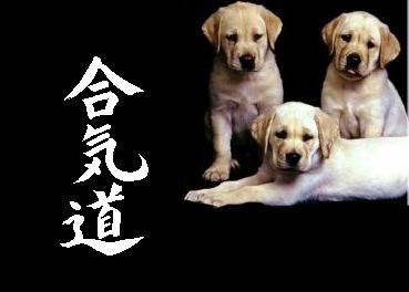 """Riscrivere """"Aikido"""" per la Treccani"""