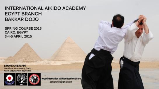International Aikido Academy - Egypt Branch Spring Course 2015
