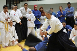 Video: Aikido Italian-Style in New Cairo with S.Chierchini