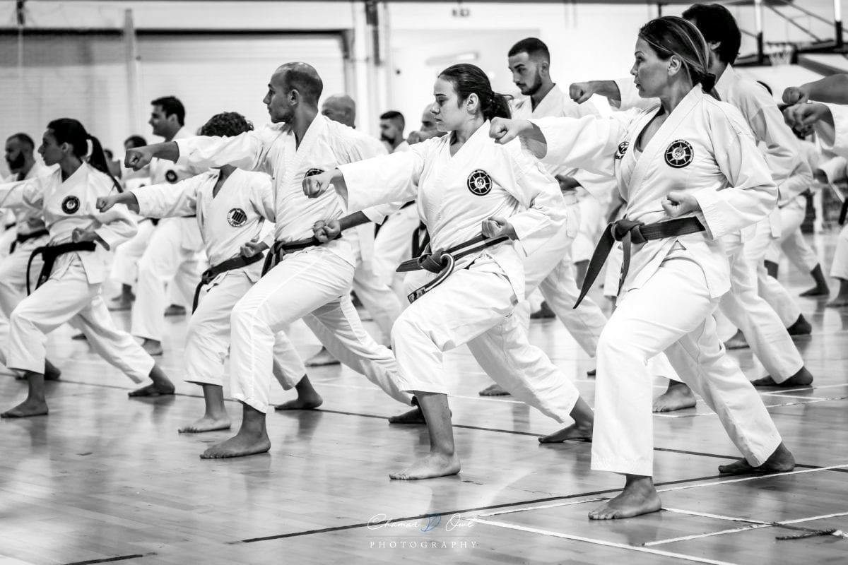 Kihon nel Karate